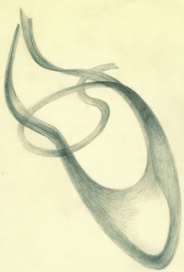 abstract form  .  graphite on card  .  2012